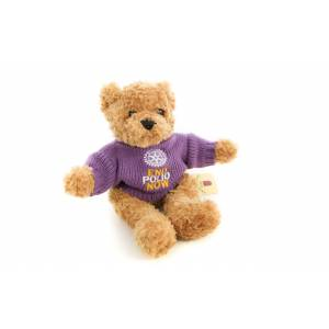 Bear Toffee 10 inch with purple sweater included